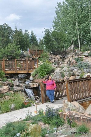 at the alpine gardens picture of betty ford alpine gardens vail. Cars Review. Best American Auto & Cars Review