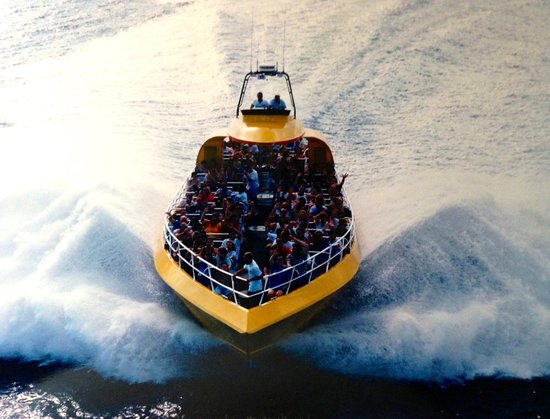CYCLONE Speedboat Tours