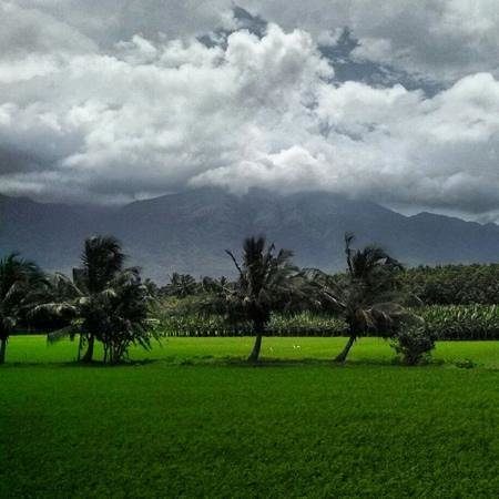 nagercoil tourism best of nagercoil india tripadvisor