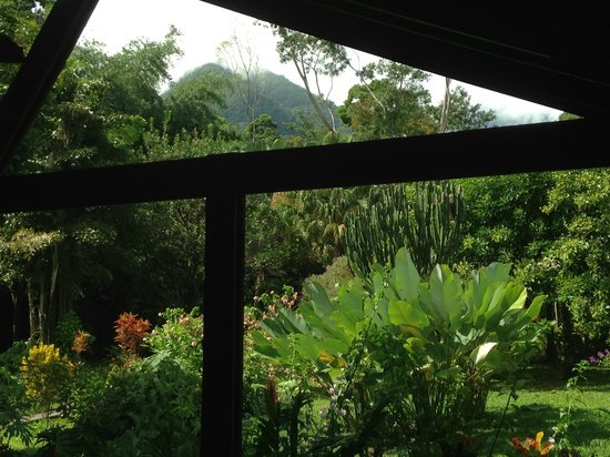 View from restaurant picture of the lodge at pico bonito for Buro rent garges les gonesse