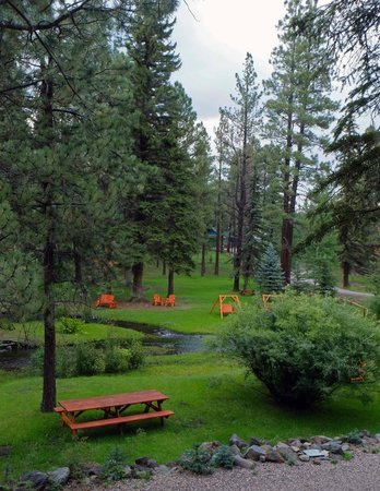 Red setter grounds picture of molly butler lodge for Cabins to rent in greer az
