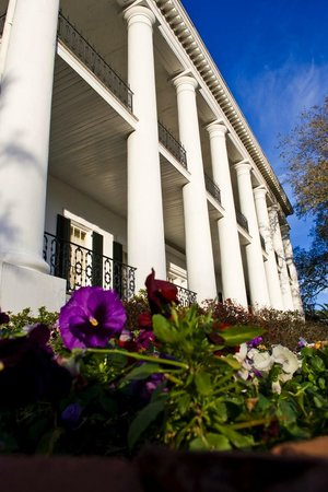 Photo of Dunleith Plantation Natchez