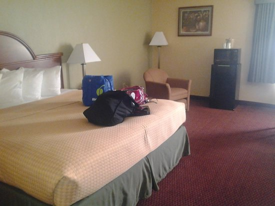 BEST WESTERN Luxbury Inn Fort Wayne: Nice Big Bed