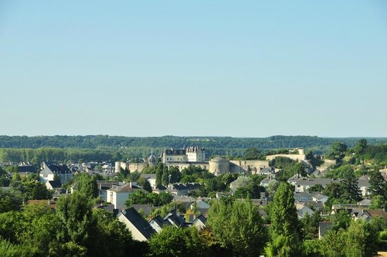 Novotel Amboise: A view of Amboise town from our room