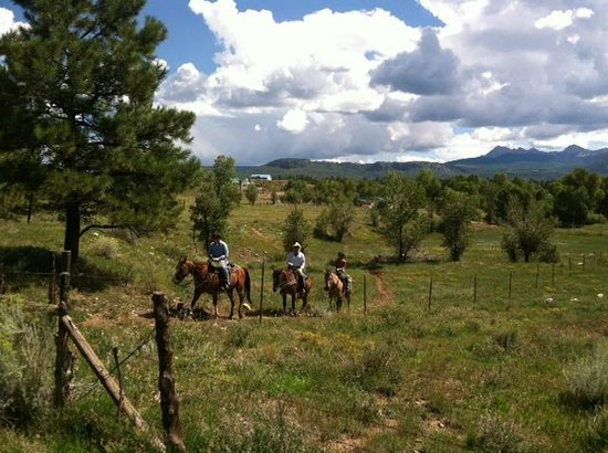 Biking Picture Of Majestic Dude Ranch Mancos Tripadvisor