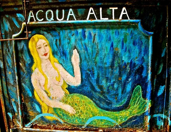 Libreria Acqua Alta Venice Picture Of