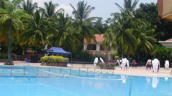 Swimming pool picture of golden palms hotel spa Resorts in bangalore with swimming pool