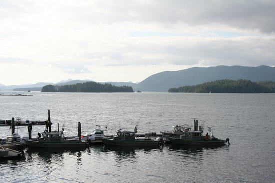 Photo of IslandView Resort and Charters Sitka