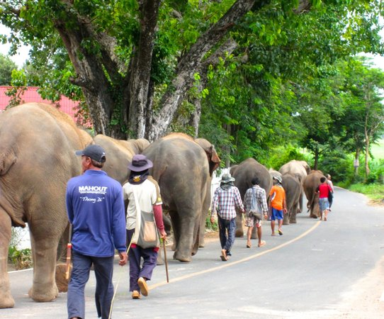 Surin, Thailand: Walking to the river