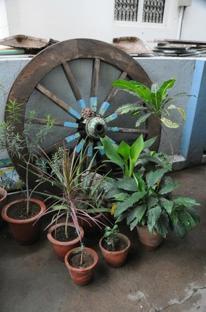 Mysore Bed and Breakfast: plenty of plants and historical artefacts