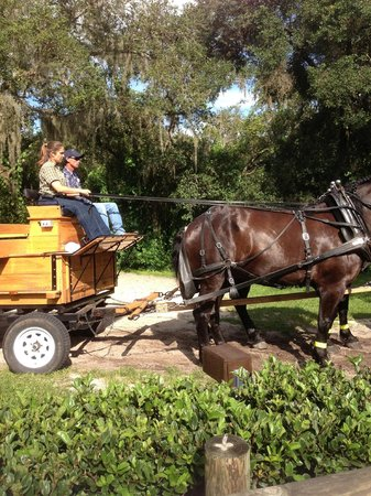 The Campsites at Disney's Fort Wilderness Resort: Wagon ride at Fort Wilderness