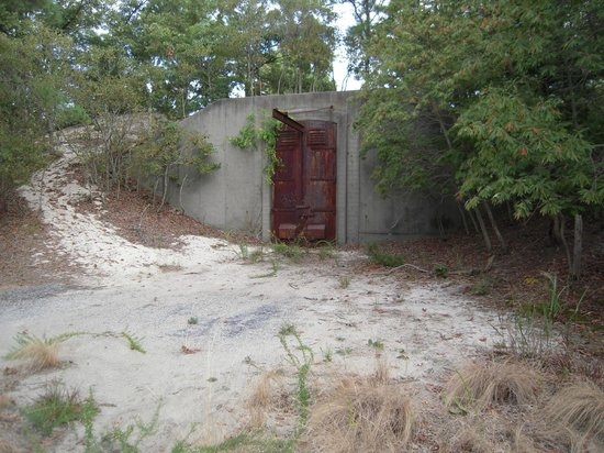 Bunker picture of cape henlopen state park campground for Cape henlopen fishing report