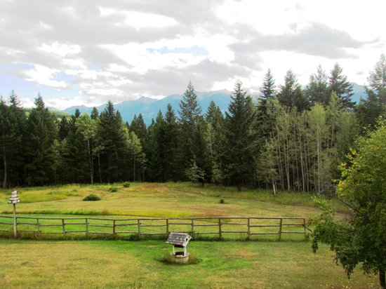 Kicking Horse Canyon B&B: View from our room.