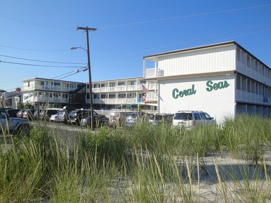 Picture of coral seas oceanfront motel beach haven tripadvisor