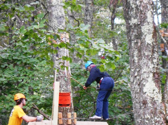 Mountain Lake Lodge: Learning to use the Tree Top Adventure Course