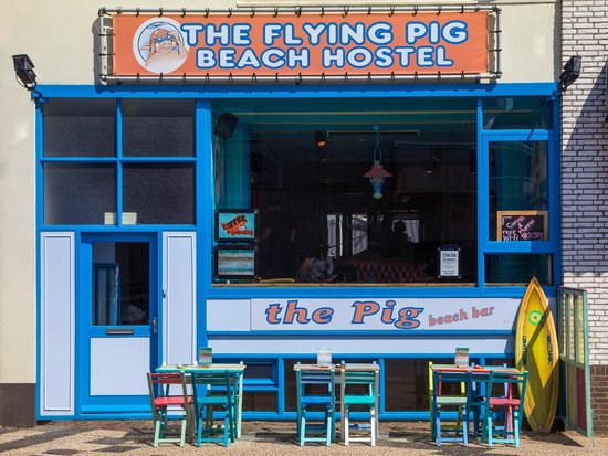 Flying Pig Beach Hostel