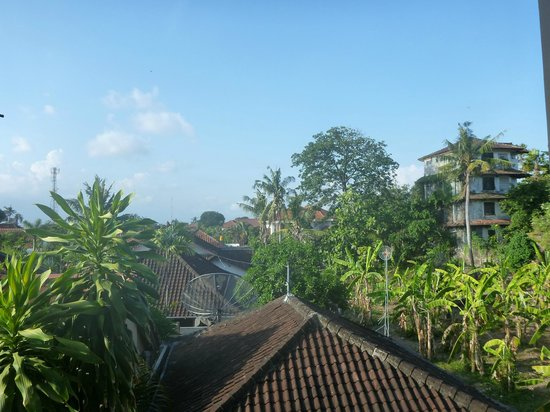 Pondok Ayu: View from our room