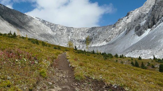 Ptarmigan Cirque Interpretive Trail