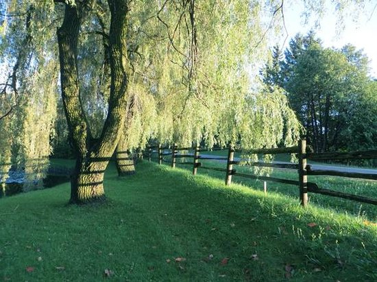 Inn on the Moraine: Beautiful Sweeping Grounds & Lush Trees