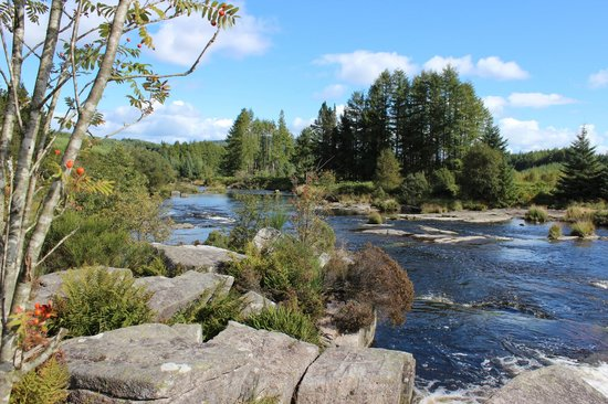 Otter Pool Picture Of The Raiders Road Forest Drive Dumfries And Galloway Tripadvisor