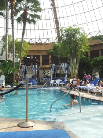 Harrah's Resort Atlantic City: Hit the thumbs up button! Indoor pool area, large jacuzzi directly behind me.