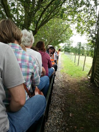 Faversham Miniature Railway