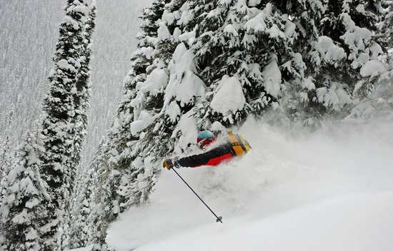 a helicopter skiing adventure in the cariboo mountains of british columbia in canada Faq of heli-skiing at silvertip lodge is located at the far east end of quesnel lake in the british columbian cariboo mountains faq of heli-skiing at silvertip lodge is located at the far east end of quesnel lake in the british columbian cariboo mountains.