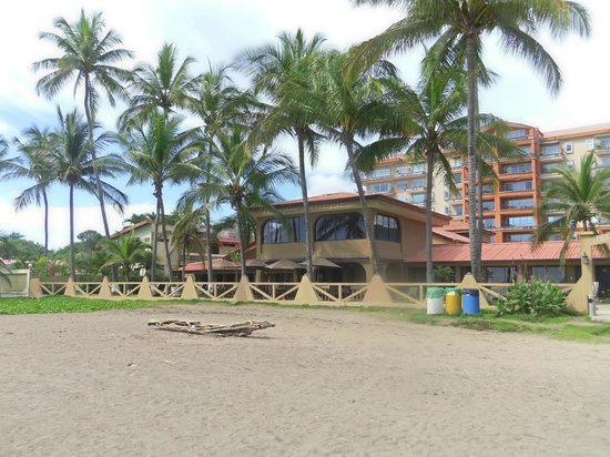 Hotel Cocal & Casino: Beachside view of the Cocal Hotel & Casino