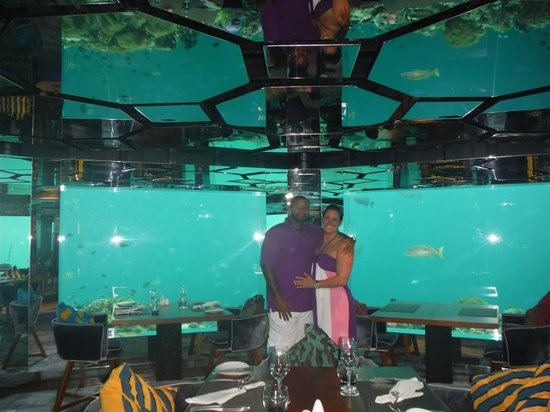 Us in sea the underwater restaurant picture of for Appart city dublin