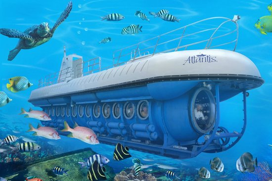 De Palm Tours: Atlantis Submarines Expedition