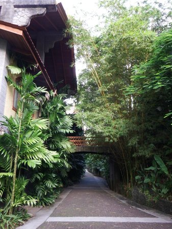 The Springs Resort and Spa: Walk to the room.