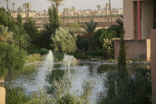 Jardin picture of club marmara madina marrakech for Bar jardin barcelona