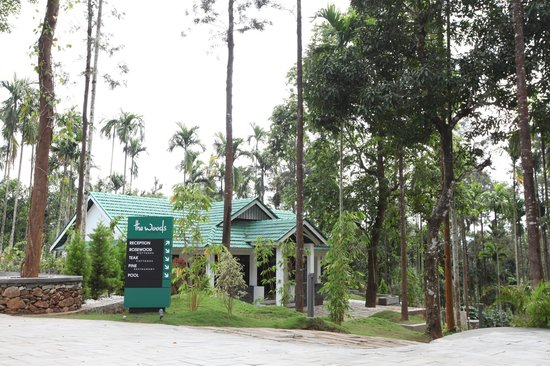 The Woods Resorts