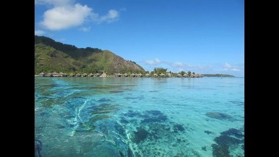 InterContinental Resort & Spa Moorea: Le lagon avec au fond l'hotel