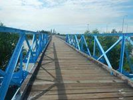 the bridge at dong ha Tours can be arranged from dong ha by dmz tours (located along le duan   up on the bus coming from hue, and go to the tunnels, dakrong bridge, rockpile, .