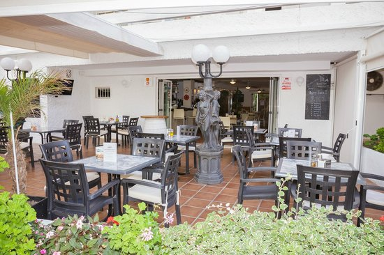 Elephant shower on the beach picture of aparthotel puerto azul marbella marbella tripadvisor - Aparthotel puerto azul marbella ...