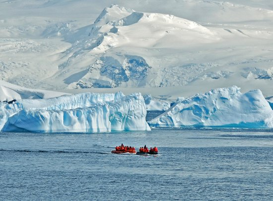 South pole photos featured images of south pole for How to go to antartica