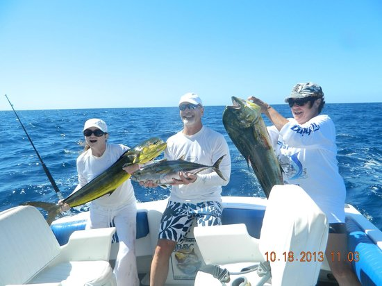 My wife 39 s first marlin ever picture of fish on for San diego private fishing charters