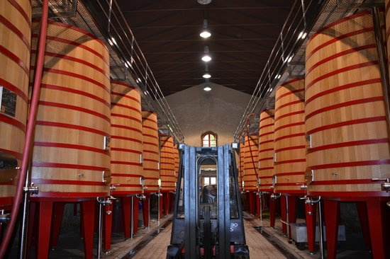 Cave perso picture of bodegas marques de riscal for Bodegas marques de riscal