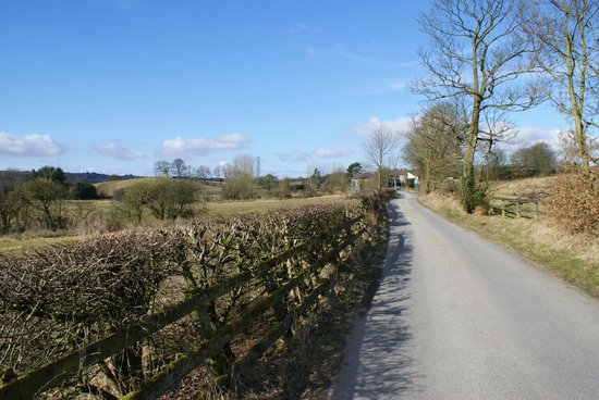 Loe Lodge: Road to the Property