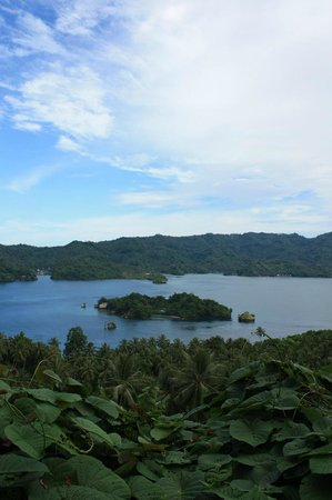 Dabirahe at Lembeh Hills Resort: On the way to the resort