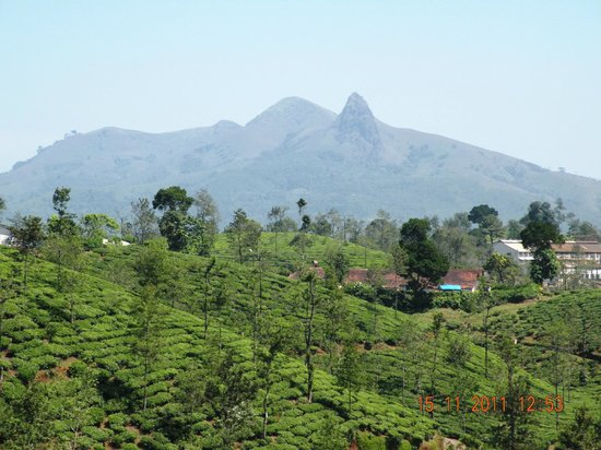 Gudalur India  city pictures gallery : Gudalur, India: Needle rock