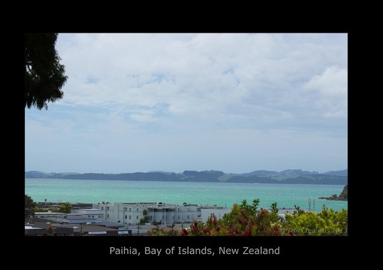Bay Cabinz Motel: Room with a view!