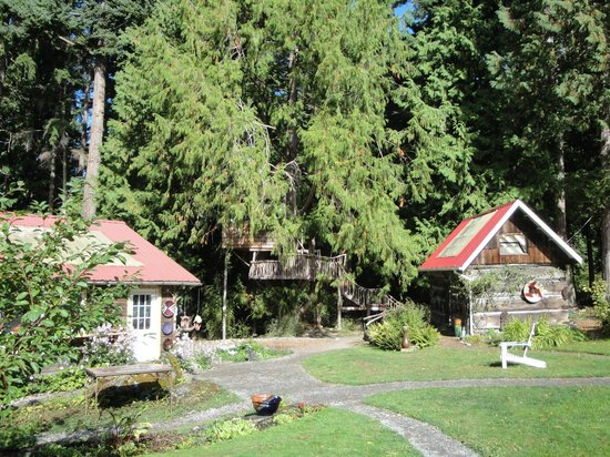 Very cool pottery and other art. - Review of Orcas Island ...