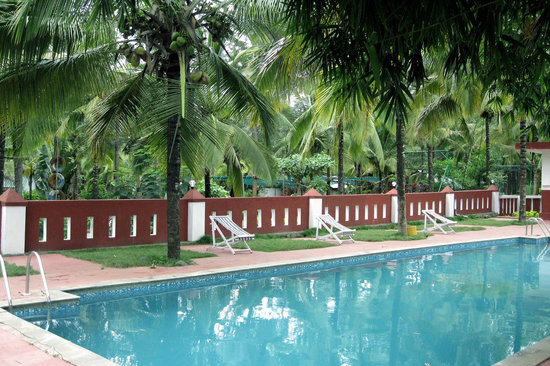 Parumpara adventure cultural holiday resort coorg kushalnagar hotel reviews photos rates Hotels in coorg with swimming pool