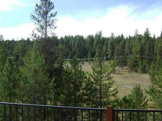 Bear Creek Lodge: View from back deck