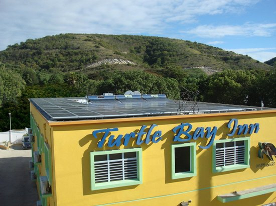 Photo of Turtle Bay Inn Lajas