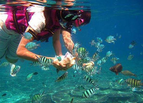 Snorkeling Phuket Picture Of Euro Khmer Voyages Day