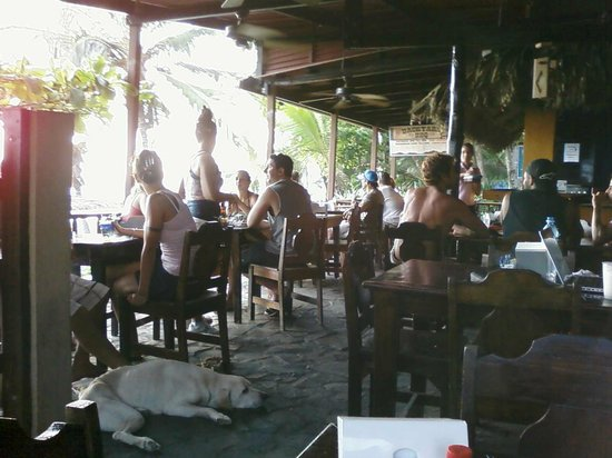 foto de backyard bar and grill playa hermosa from the