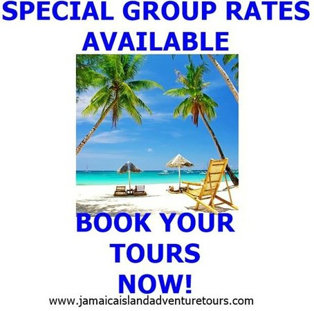 Jamaica Island Adventure Tours Picture Of Jamaica Island Adventure Tours Private Tours St